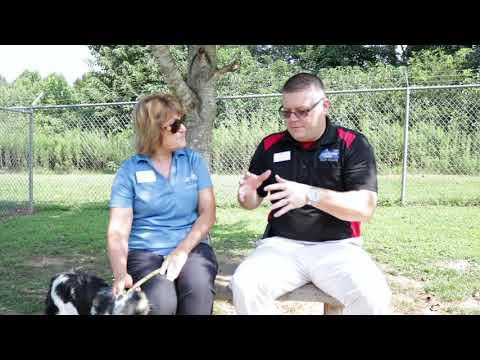 Oconee County Humane Society In Seneca Meet The Director Angel Newman Parkbench