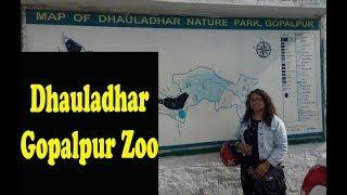 Gopalpur Zoo, Dhauladhar national nature park, Himachal Pradesh #5