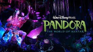 Pandora – The World of Avatar, Disney's Animal Kingdom Theme Park at Walt Disney World Resort