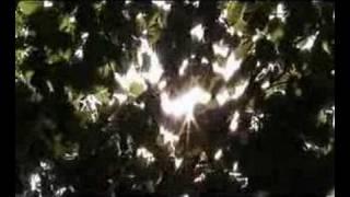 Falkenbach - Ultima thule