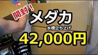 メダカ水槽開封!42,000円