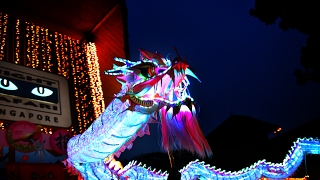 Singapore Night SAFARI Dragon Dance - Rooster In The Roo-Nar New Year