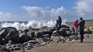 Big Wave Surfers Cheered by High Waves Rolling Toward Coast