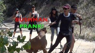Bushman Scare Prank Compilation! Greatest Scares Ever!
