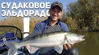 Рыбалка в астрахани сезон когда