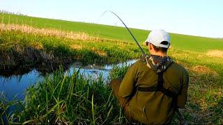 Ловля карася летом на удочку с боковым кивком