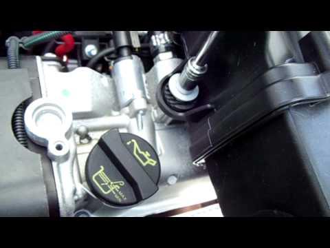 Der Motor das 1.6 Benzin nissan terrano