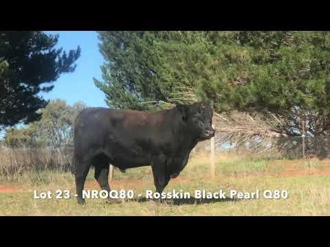 ROSSKIN BLACK PEARL Q80