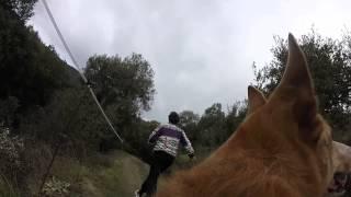 preview picture of video 'Finde a Sant Pere de Vilamajor'