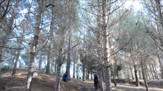 preview picture of video 'CAMPIONATO PROVINCIALE MTB SANTA NINFA 15 DICEMBRE 2013'