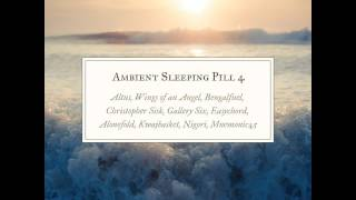 Ambient Sleeping Pill 4 - 02 - Wings of an Angel - The Ever Present Chance for Splendor
