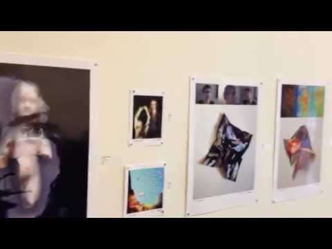 """Opening of """"Introjection"""" Solo show at Cornelius Arts Center - 2014"""