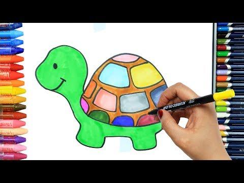 Kaplumbağa çizimi Ve Boyama Boyama Izle Video Free Music Videos