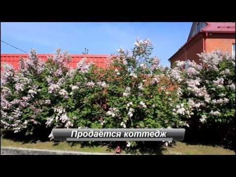 Вышинский монастырь храмы