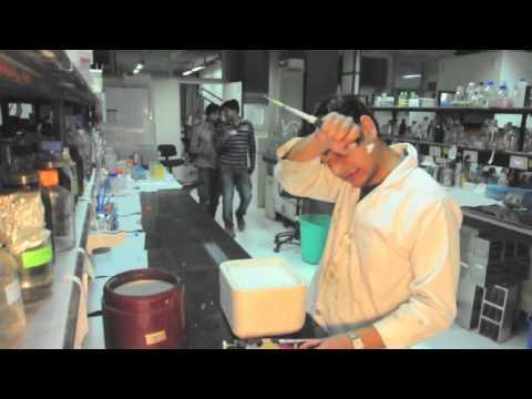 PNKD - PhD Na Karenge Dobara - Full Movie