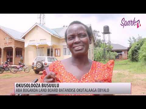 Aba Buganda Land Board batandise okutalanga ebyalo nga basolooza busuulu