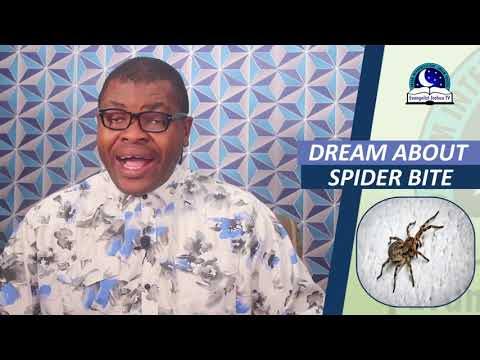 DREAM ABOUT SPIDER BITE - Spiritual Meaning Of Spiders