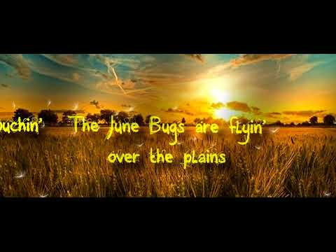 T.G.Copperfield - June Bugs