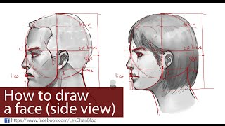 How to Draw a Face (side view)