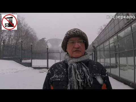 Сотрудница губернатора Андрея Воробьева ударила общественника