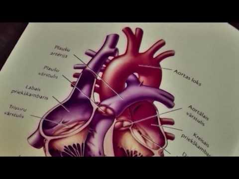 Neirogēnu hipertensija diagnoze