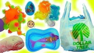 Dollar Tree Haul - Frozen Queen Elsa Craft, Surprise Blind Bags, Mermaid Doll, Squishy Shark