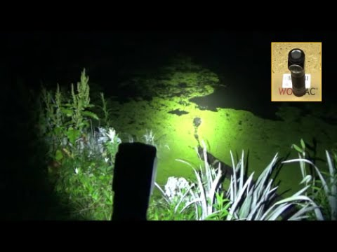 Budget Friendly ($20) Headlamp Review, Wowtac A2 Headlamp