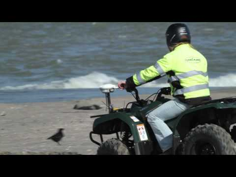 Sand Motor in the Netherlands