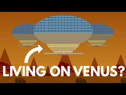 Should We Live On Venus BEFORE Mars?