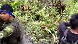 Video Helikopter TNI-AD ditembaki OPM MP3, 3GP, MP4, WEBM, AVI, FLV September 2019