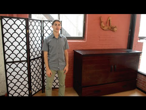 Cabinet Bed Review