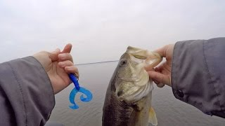 Winter Bass Fishing with Worms and Crankbaits