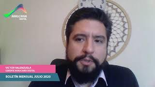Boletín mensual Julio 2020 Araucanía Digital (Piloto)