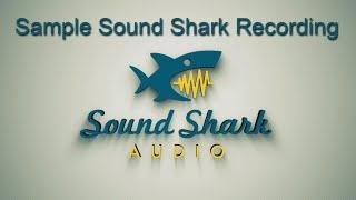 Sample Sound Shark Recording