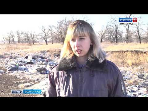 О выявлении захламления и зарастания сельхозугодий сорной растительностью на территории Волгоградской области