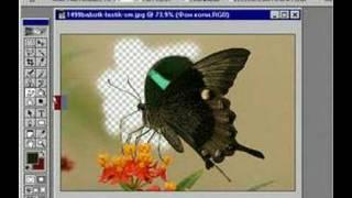 photoshop tutorial 7