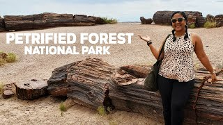 Petrified Forest National Park | One Day Travel Guide