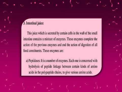 Biology Senior 2 - Enzymes in intestinal juice | اسراء جابر محمد  | الأحياء الصف الثانى الثانوى الترم الاول | طالب اون لاين