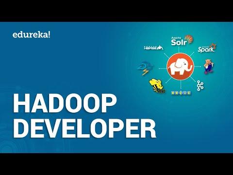 Who is a Hadoop Developer? | How to become Big Data Hadoop ...