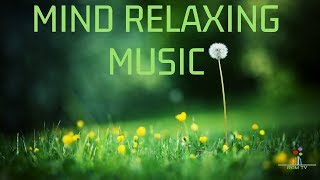mind relax tamil songs - TH-Clip