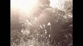 AUTUMN'S DAWN - Gone (Full Album)