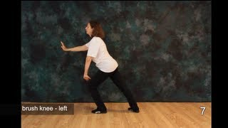 Tai Chi Moves - more Free Tai Chi Online Lessons - Moves 7, 8 and 9