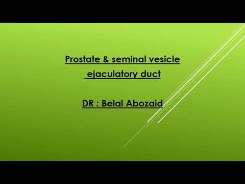 Laser vaporisation of the prostate St. Petersburg