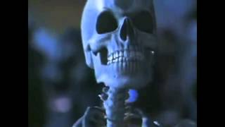 Spooky Scary Skeletons--Unofficial Music Video