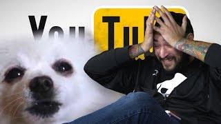 IM SORRY GABE THE DOG • WRONG SIDE OF YOUTUBE