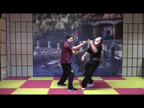 Wing Chun Online Akademie Erklärungen/Ausschnitte der 1. Grundstufe