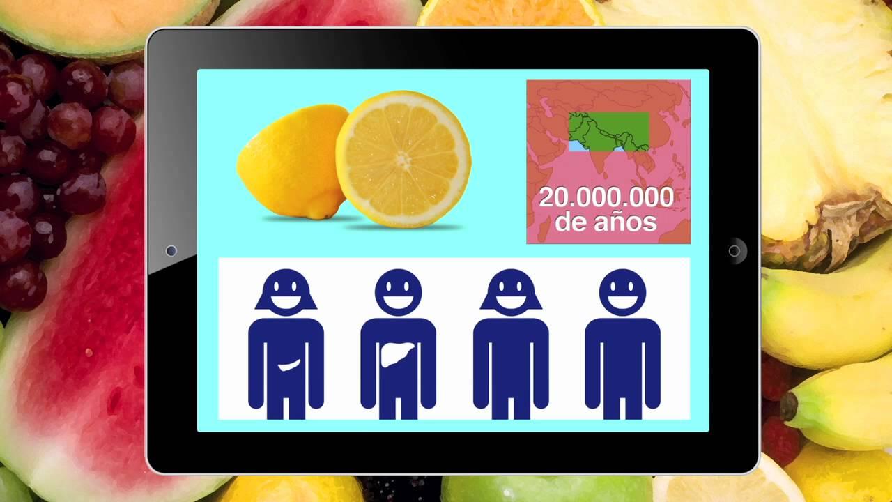 El mono y la fruta : LOS LIMONES