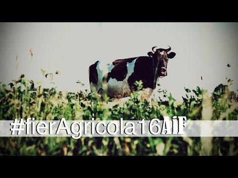 FierAgricola, il punto di riferimento per il mondo agricolo