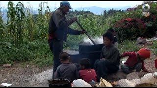 México Social - Malnutrición, hambre y entorno rural