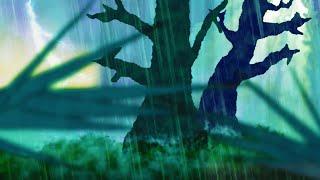 Forest Thunder & Rain | Sleep, Study, Meditate | Rainstorm White Noise 10 Hours